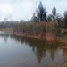 Small photo of Pond