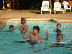 swimming bunch