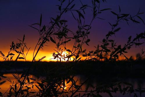 Sunrise at Truman Lake