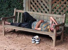 backyard, bench, furniture, wood,