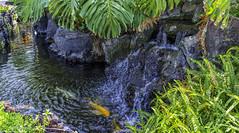 Waikoloa Resort Village