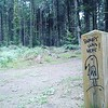 Birdy was here by Tarek... #bretagne #bzh #birdywashere #landart #graffiti #personnages #art #art #urban #mur #wall #birdy #tag #graffitiart  #streetart #streetarteverywhere #painting #paristonkarmagazine #breizh #tarek