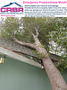 Wind-damage-CRBR-chico-sacramento-redding-yuba_city-reno by Cleanritebuildrite