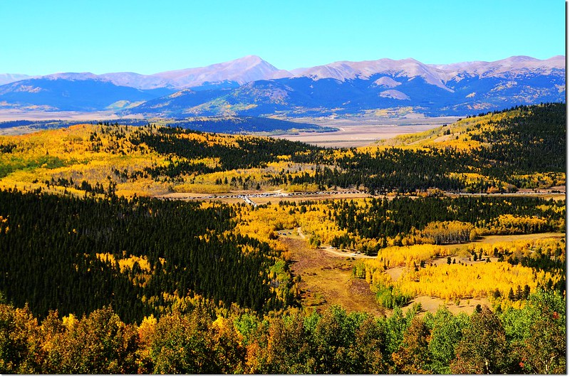 Fall colors at Kenosha Pass, Colorado (19)
