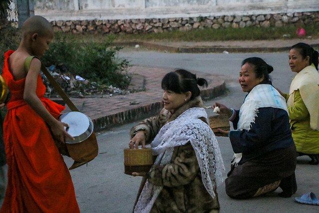 Women giving alms to a young buddhist monk at dawn, Luang Prabang, laos ルアンパバーン、早朝の托鉢