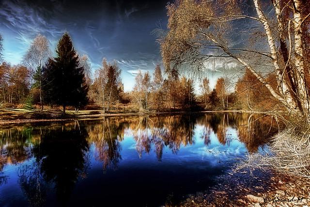 Plateau des 1000 étangs