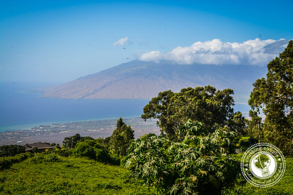View from Upcountry Maui Hawaii