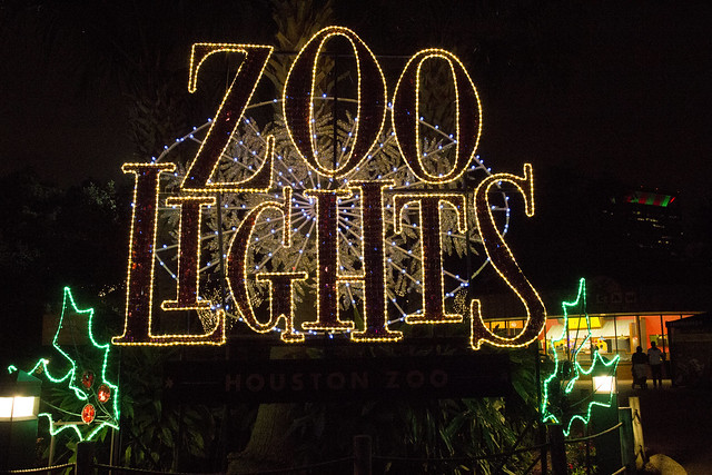 Zoo Lights_80