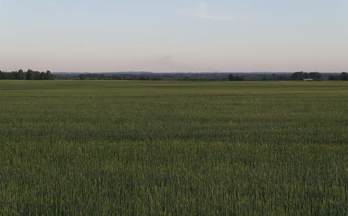 estonia võrucounty urvasteparish võrumaakond urvastevald panoramio