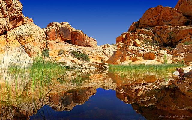 Calico Tank Reflections - Explore
