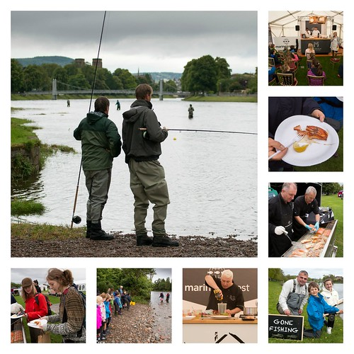 Collage Anglers & Bught