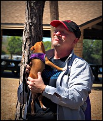 2017-03-11_P3110102_PCAS  Bark in the park (puppies) Walsingham Park