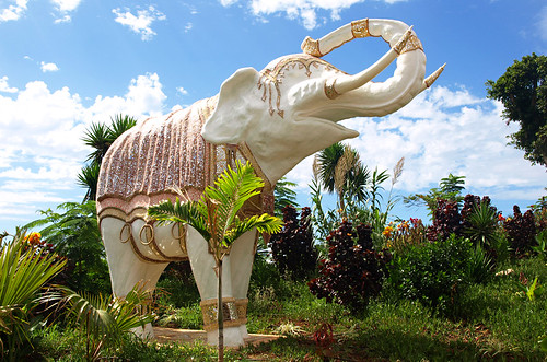 White Elephant, Siam Park, Costa Adeje, Tenerife