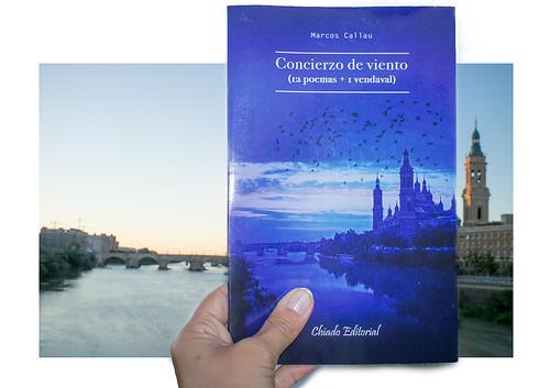 Bookface Concierzo de Viento