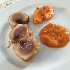 #food #cibo #tonno #albicocca