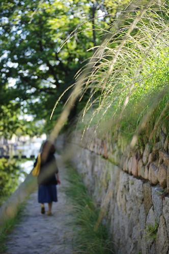 walking at afternoon