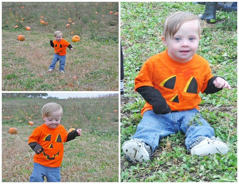 Liam at the pumpkin patch