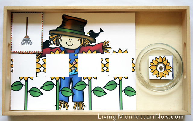 Scarecrow Long Vowel (CVCE) Words