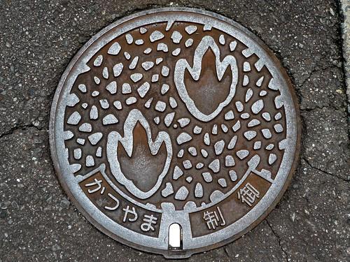 Katsuyama Fukui, manhole cover 6 (福井県勝山市のマンホール6)