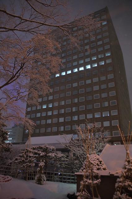 札幌市役所本庁舎 クリスマスツリー_02