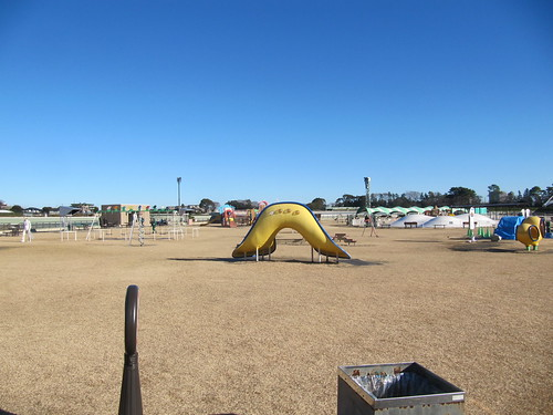 中山競馬場の公園である緑の広場
