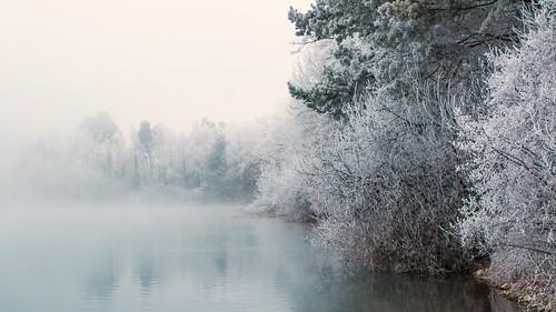 vorarlberg brederis austria freezing lake fog