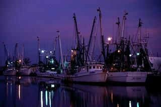 Shrimp Boats at Tarpon Springs i