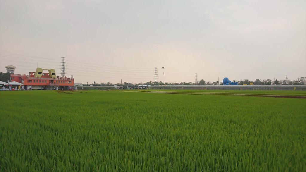 2017屏東農業博覽會 (4)