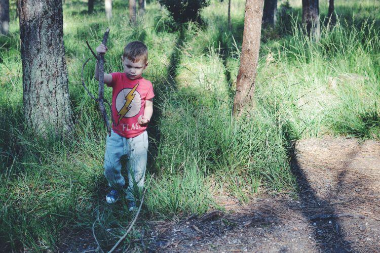 woodland stick