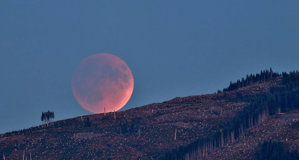 Lunar Eclipse Rising