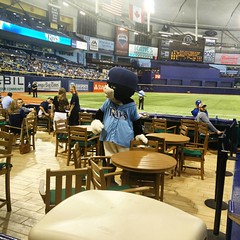 October 2, 2015 - 22:12 - The most popular mascot in the Tampa Bay area: DJ Kitty! Look at that cat.. He has his hat on backwards! Oh and there's Todd Redmond.. #bluejays #toronto #tampabay #rays #mlb #baseball #beisbol #sports #mascot #toddredmond #raysbaseball