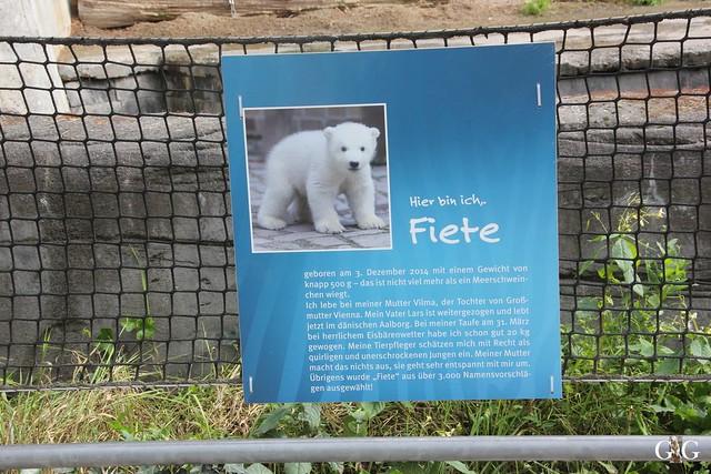 Zoo Rostock 19.09.201568