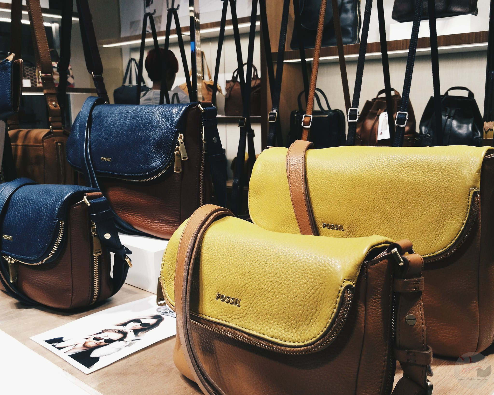 fossil fall 2015 collection