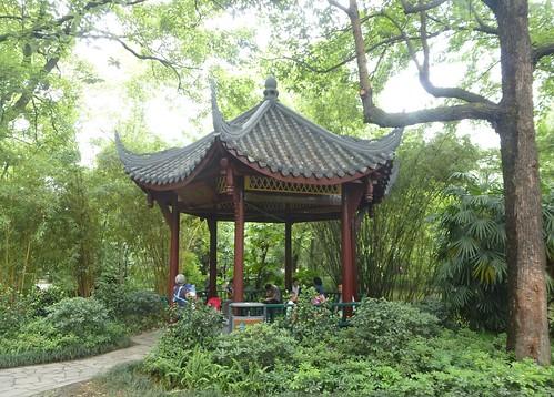 CH-Chengdu-Parc du Peuple (19)