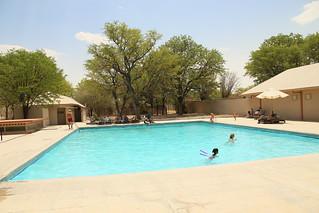 Halali Camp pool.