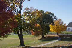 Antietam Battlefield (65)