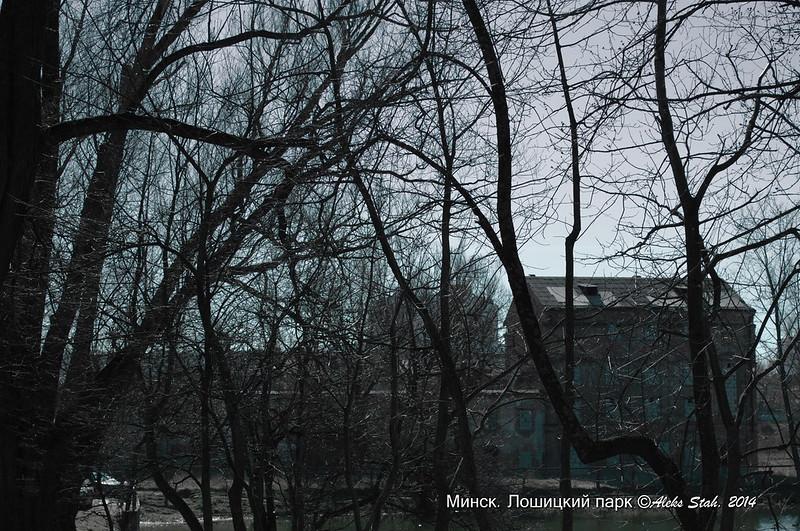 Лошицкий парк 019