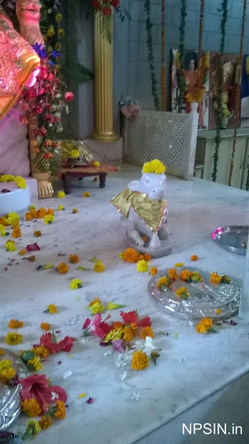 Puja flower in Sai darbar
