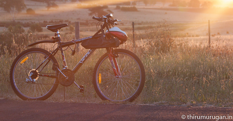 Bicycling in Summer