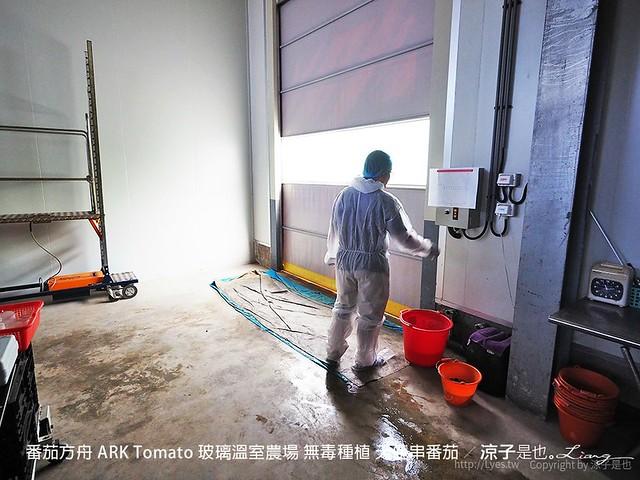 番茄方舟 ARK Tomato 玻璃溫室農場 無毒種植 天使串番茄 20