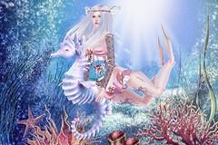 Sea's dolly princess