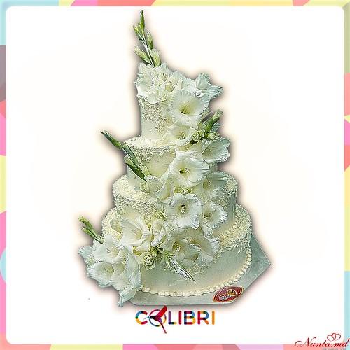 COLIBRI > Фото из галереи `COLIBRI`
