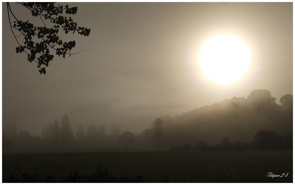 Matin de brouillard 21386437089_9e8fc7d848_b