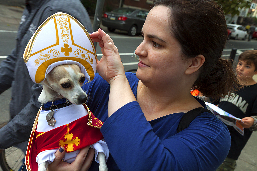 Papal dog--Center City 2
