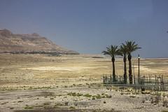 Dead Sea & Jordan Rift Valley 020