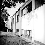 Kleiner Ring Reihenhausbebauung des Bauhaus Dessau Ensemple - analog, S/W, 6x6