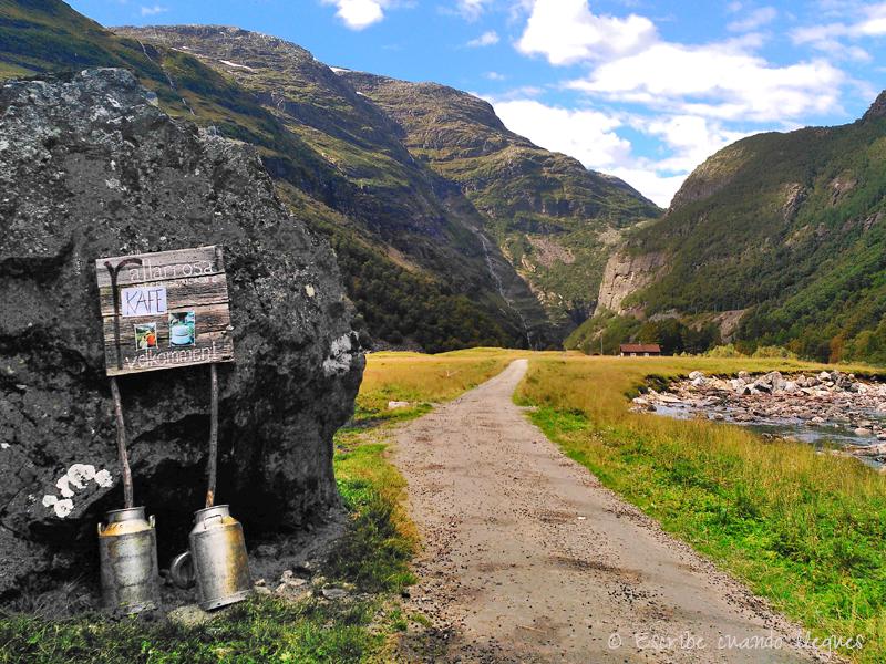 Fotos_de_Noruega_Paseo_Flam