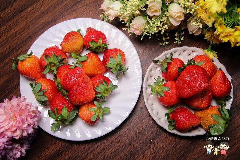 彰化草莓 005
