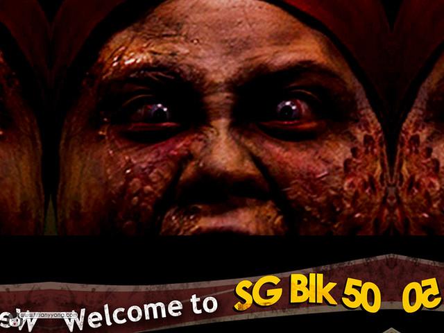 HHN5 SG Blk 50