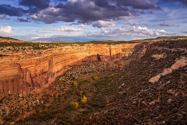 Fallen Rock View